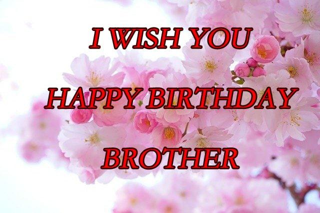 Birthday Wishes Download