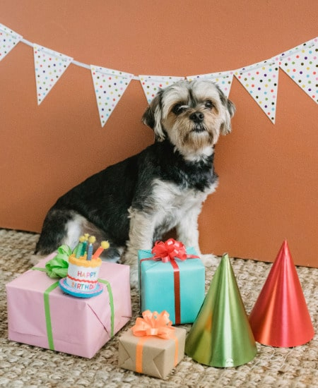 Latest Happy Birthday Images Download