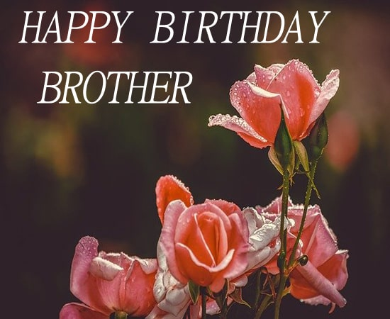 Top Birthday Wishes for Brother