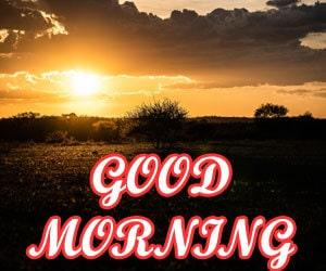 Beautiful Good Morning Images Hd 1080p Download