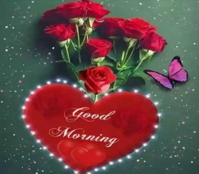 Beautiful Happy Sunday Good Morning Images For Whatsapp