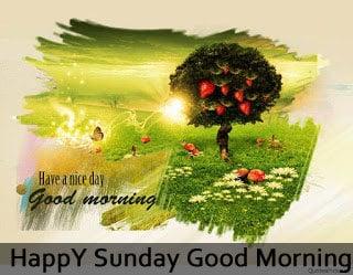 Cute Photo Happy Sunday Good Morning Images