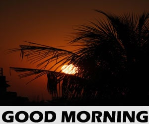 Good Morning HD Images 1080p