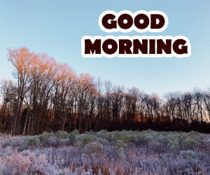 Good Morning Images 1080p Hd