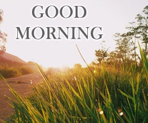 Good Morning Pictures 1080p Download