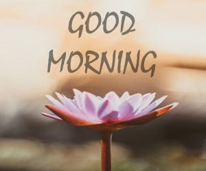Good Morning Pictures Hd 1080p Download