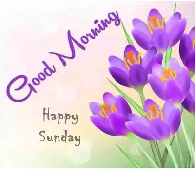 Good Morning Sunday Images Hd