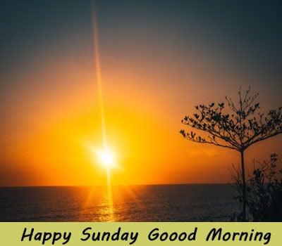 New Happy Sunday Good Morning Pics For Whatsapp