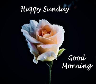 Sunday Good Morning Images Wallpaper Pics HD