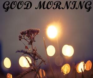 good morning photo 1080p download hd