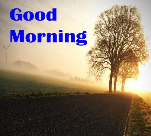 Download Good Morning Photo Hd