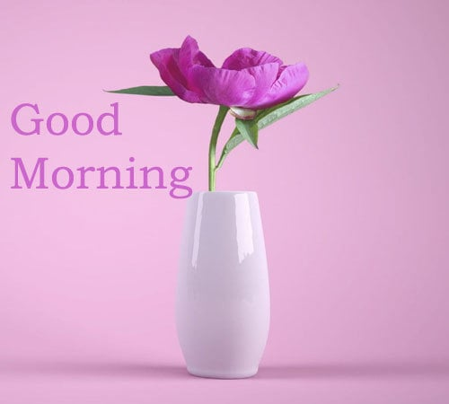 Good Morning Pictures Download Hd