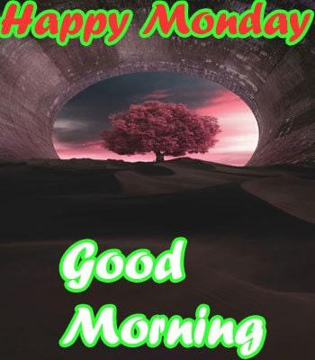 HD Happy Monday Good Morning Wallpaper Download