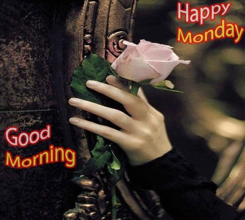 Happy Monday Good Morning Pics