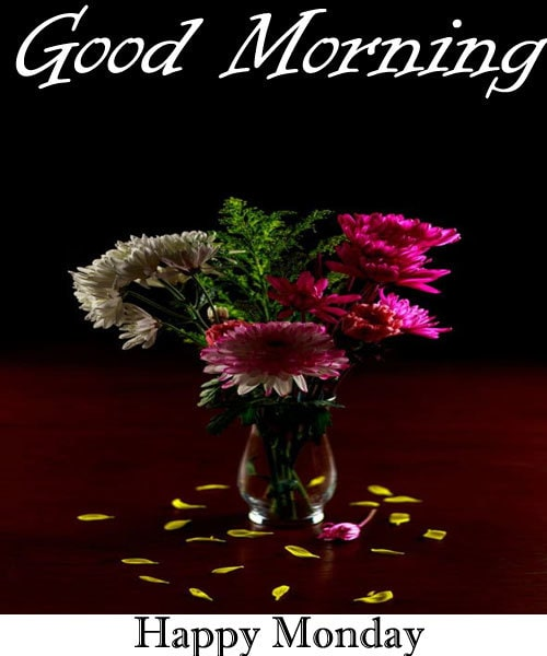 Happy Monday Good Morning Wallpaper Hd