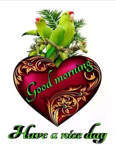 Latest Good Morning Wishes Images