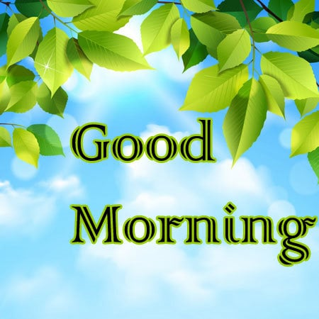 gud morning pictures