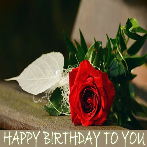 Happy Birthday Love Wishes Images Download