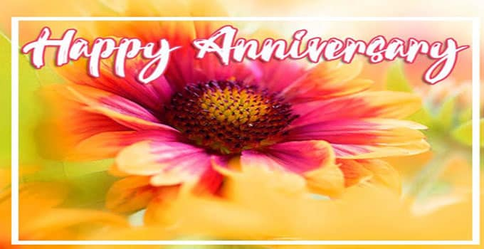 happy anniversary images for friend