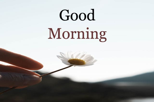 Good Morning Images HD 1080p