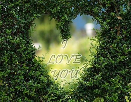 I Love You Pics Download