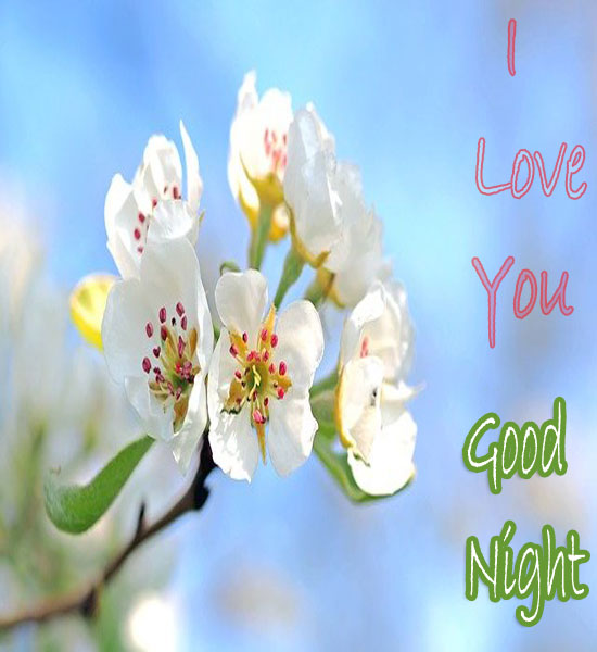 Beautiful Good Night Sweetheart Images