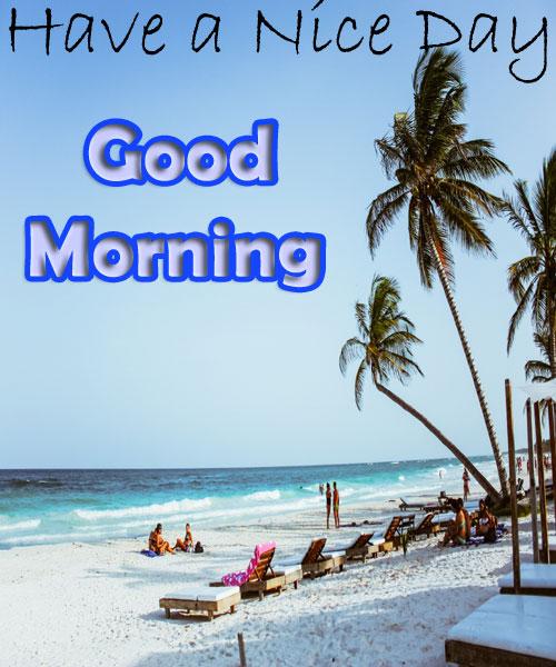 beach good morning photos